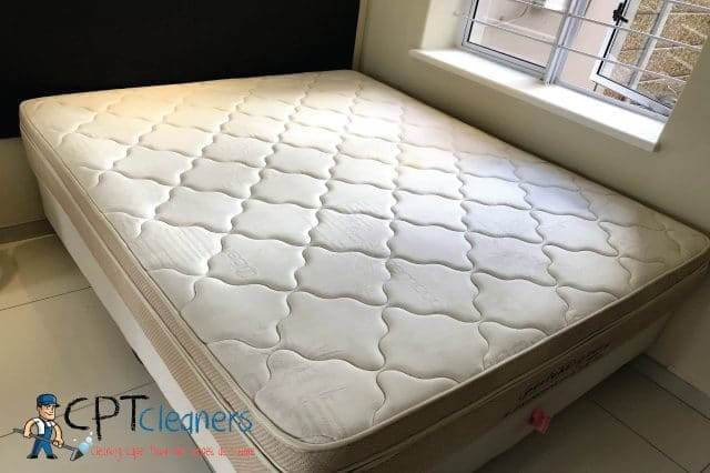 Mattress Cleaning Reliable